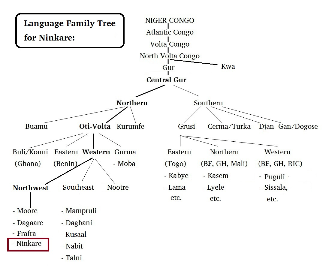 language-family-tree-for-ninkare